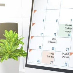 Schedule short meetings by adjusting your Calendar view in Microsoft Outlook
